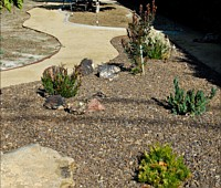 Water Wise Lanscaping